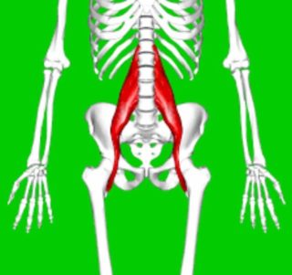 Back pain due to tight psoas
